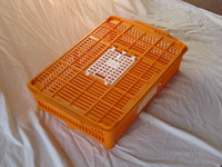 Crate For Quail
